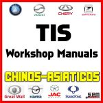 TIS Workshop Manual Chinos Asiaticos